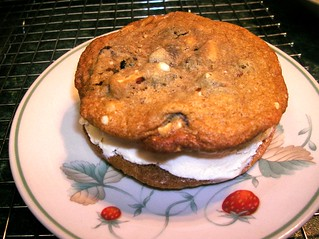 homemade ice cream cookie sandwich | by Theresa111