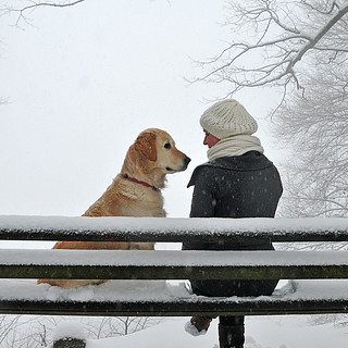 Two on a snowy bench ... | by joergschickedanz