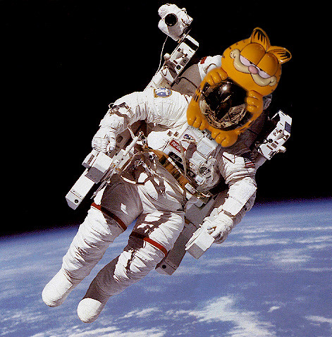 Where No Lazy Cat Has Gone Before—Brian Fukushima, Astronaut (Doesn't Work Mondays) | by Colleen AF Venable