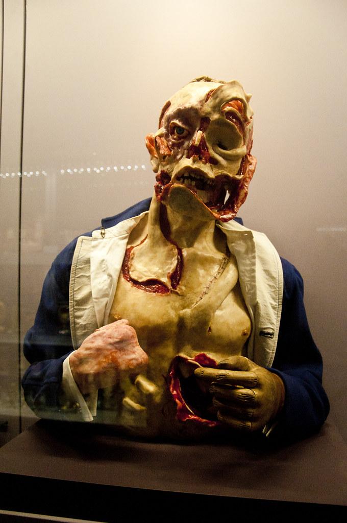 Huntarian Museum Of Anatomy Greghollandtumblr Flickr