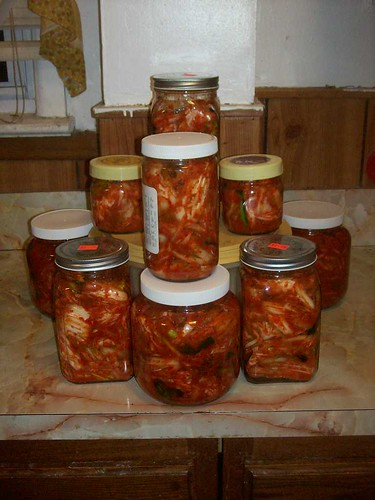 HUGE BATCH OF KIMCHI | by fridabag15