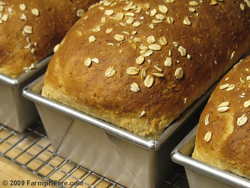 Oatmeal Toasting Bread in loaf pans | by Farmgirl Susan