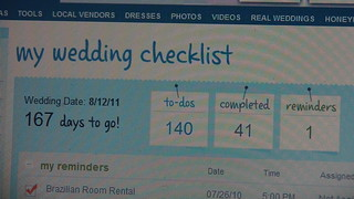 My Wedding Checklist on theknot.com | by khoberg