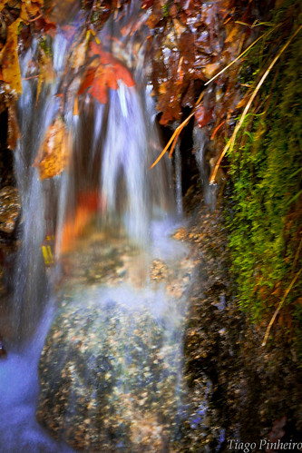 Waterfall | by gulfman1