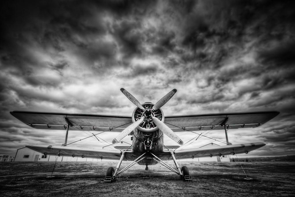 Black White Bi Plane