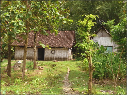 rumah pedesaan semut ireng flickr