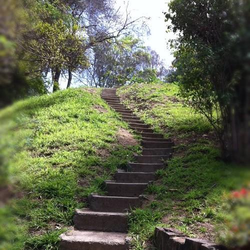 Incroyable UCR Botanical Gardens | Flickr