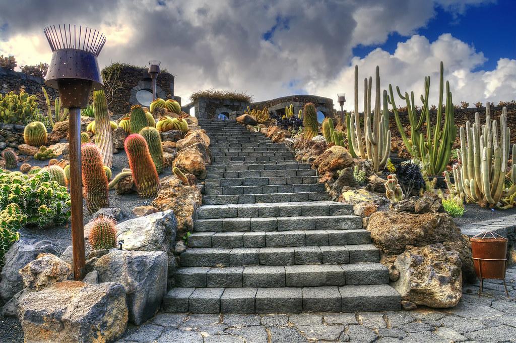 jardin de cactus stairway by wolfgang staudt - Jardn De Cactus