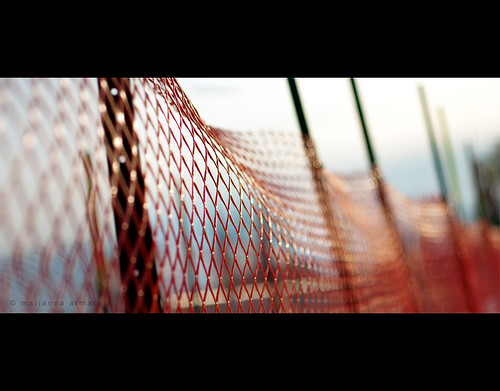 bokeh fence | by marianna_a.