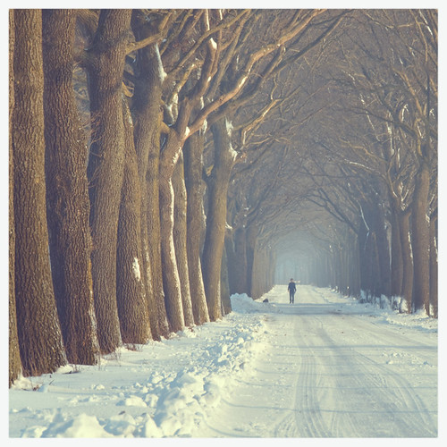 winter roads | by raym☺nd