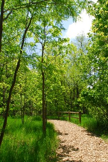 Arbor Day Farm Wooded Trail | by Lied Lodge