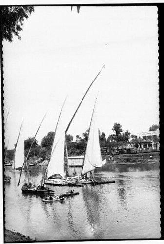 Sailing vessels on the Nile River in Cairo, Egypt | by Australian National Maritime Museum on The Commons