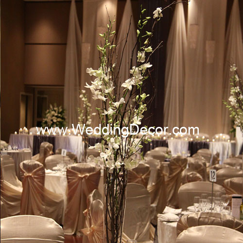 Wedding centerpieces birch branches white orchids flickr