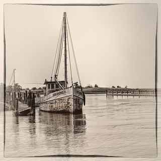 Tilghman Island Oyster Buy Boat | by Bill Conway