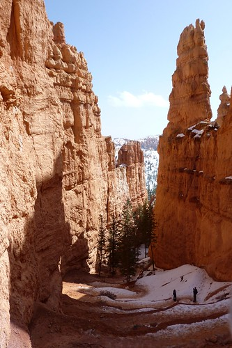 Bryce Canyon | by Markusnl