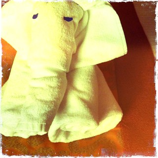 towel folded elephant | by treiCdesigns
