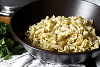 "pretty, pretty pasta (""campanelle"") 
