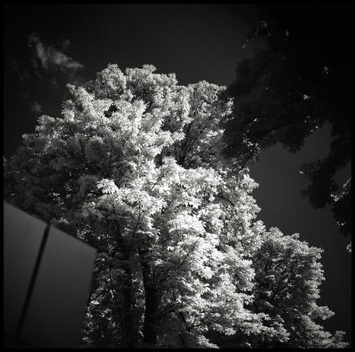 IMM infrared | by Nicolas Borenstein