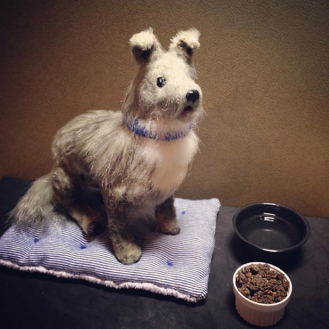 Waiting to be adopted...  Baxter. 1/6th scale fully poseable art doll. :3 . . #artdoll #poseabledoll #poseableartdoll #poseabledog #dog #lastalliancestudios