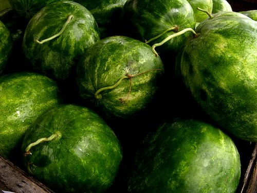 watermelons | by srqpix