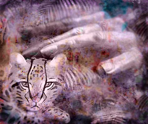 protect the endangered ocelot | by MouradianR :)