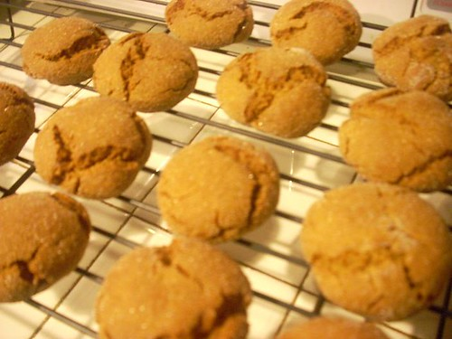Molasses Cookies | by Library Kat