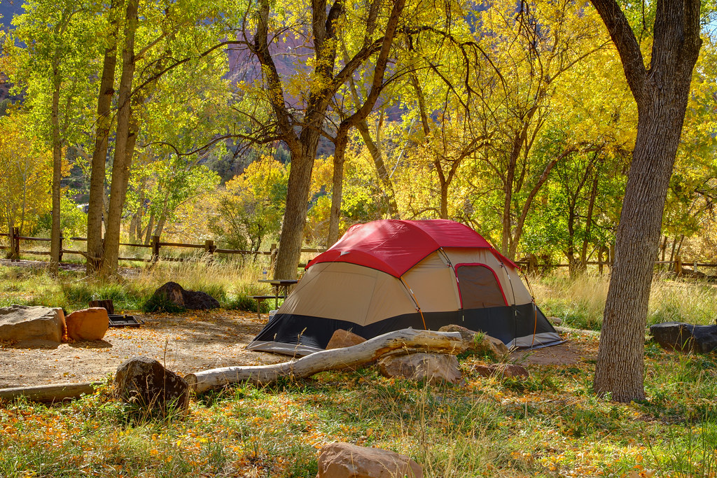 ... Autumn tent c&ing in Zion National Park | by IronRodArt - Royce Bair ( Star & Autumn tent camping in Zion National Park | Late morning in u2026 | Flickr