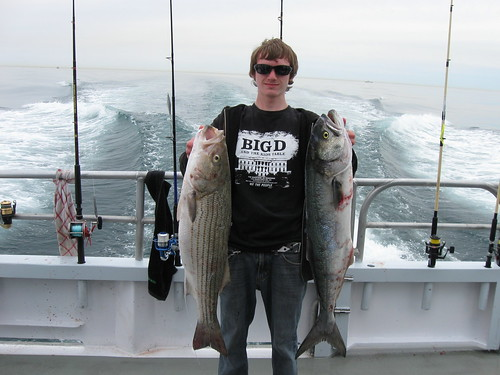 Striped bass and blue fish striped bass and blue fish for Queen mary fishing report