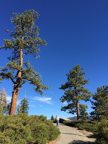 YosemiteGlacierPoint-11
