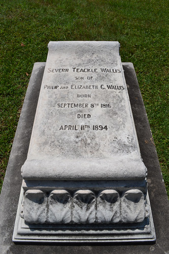 Severn Teackle Wallis | by Monument City