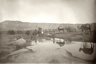 Pools at Ain Ghudian, Wady Arabah | by Palestine Exploration Fund