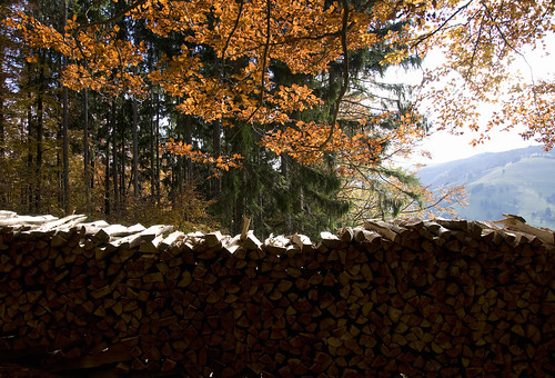 Stack of Firewood | by nicvri