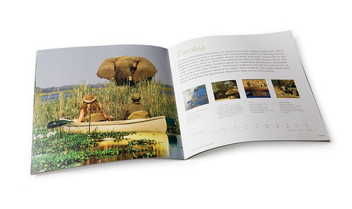 Travel Brochure Spread | by Wild Dog Design