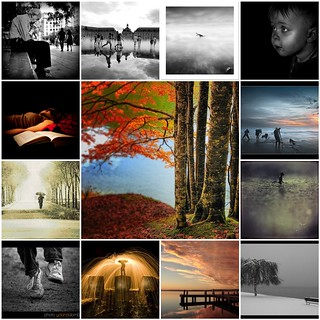 Simply Your Best Photo - The winners of the week 49 contest | by The Winners of Simply Your Best Photo