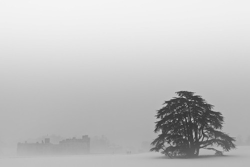 White Out (Leeds Castle), Kent | by flatworldsedge