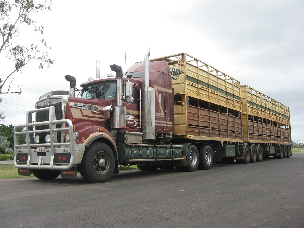 Willoughby Livestock Transport T908