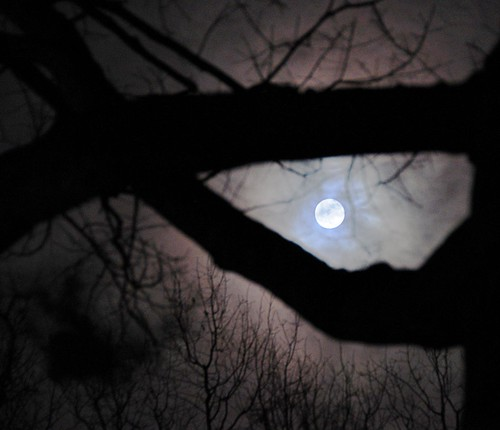Mooning Over New Missoni: Full Moon Over Falls Church