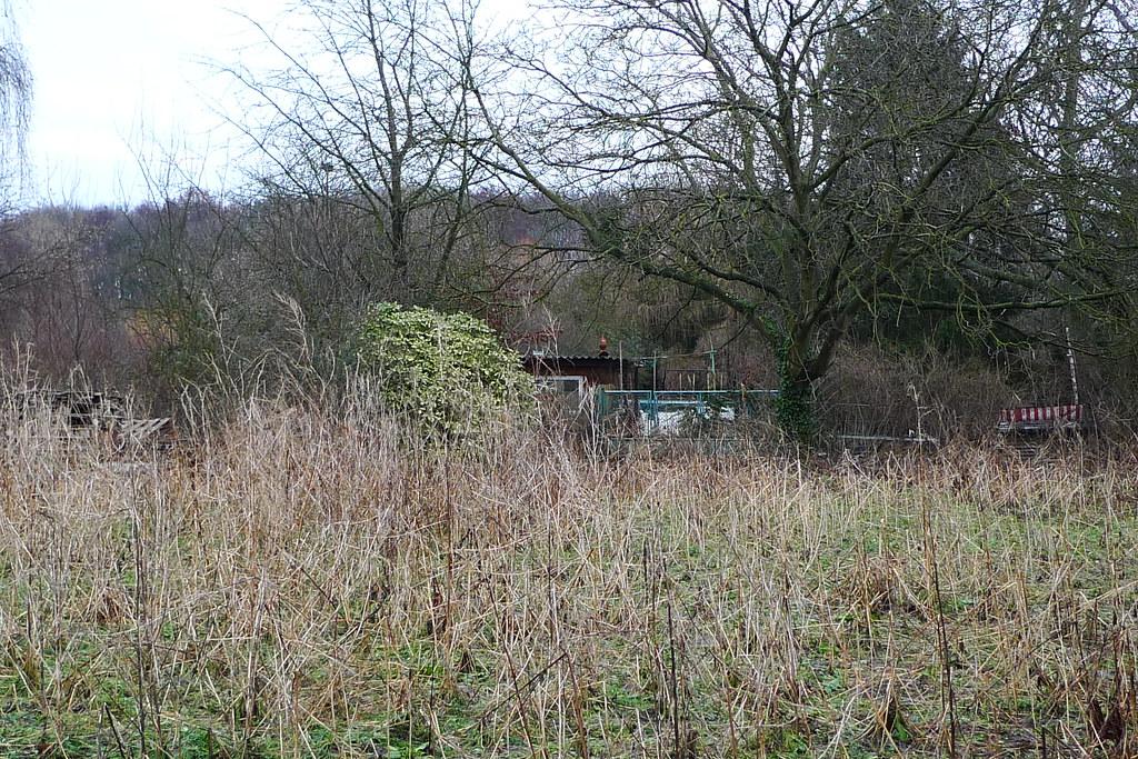 Verwilderter Garten 1060934 Spaziergang Bei Nieder Eschbac Flickr