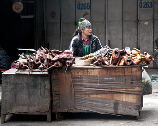 Hanoi dog meat stall -3274128 | by Neil.Simmons