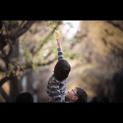 reach for | by soshiro
