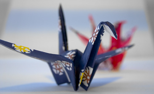 Help Japan Brighton University Peace Cranes | by Dominic's pics