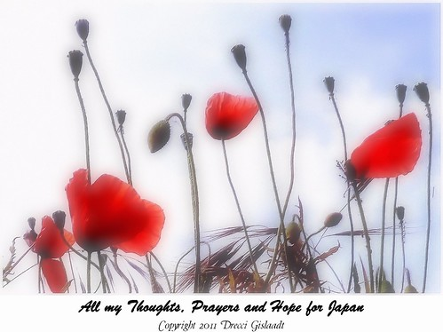 All my Thoughts, Prayers and Hope for Japan | by Gislaadt Art - new stocks on DA
