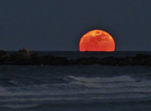 Perigee Moonrise, Plymouth, MA | by Genny164