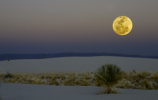 White Sands, 3 | by Harold Green