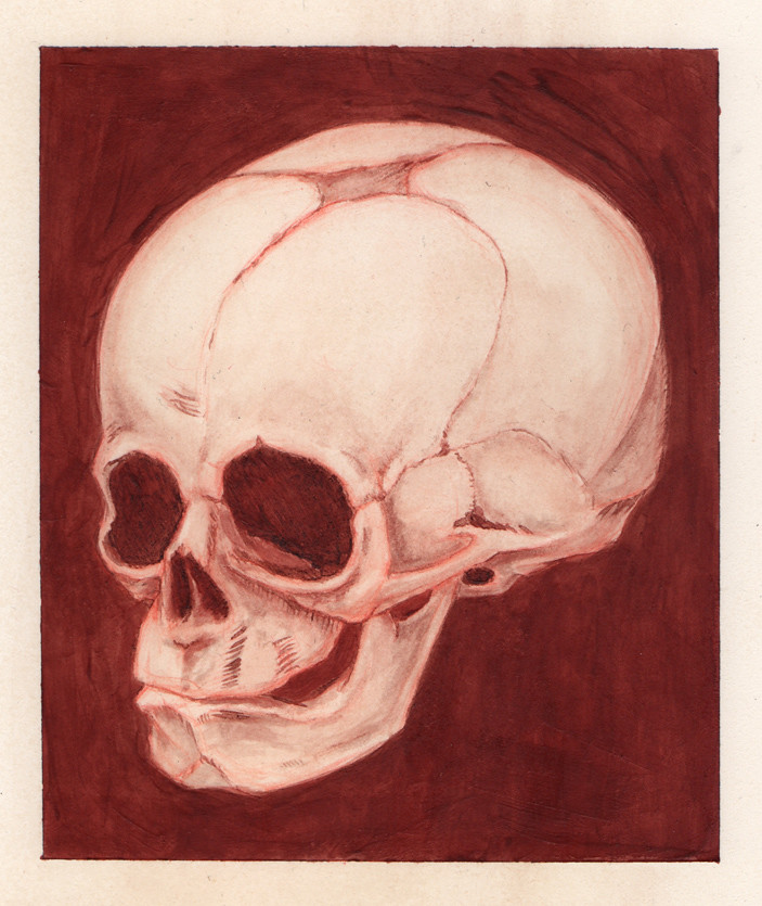 30 Week Fetal Skull Human Blood Painting 2016 Human Blood Flickr