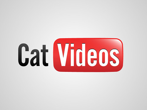 You Tube / Cat Videos | by Viktor Hertz