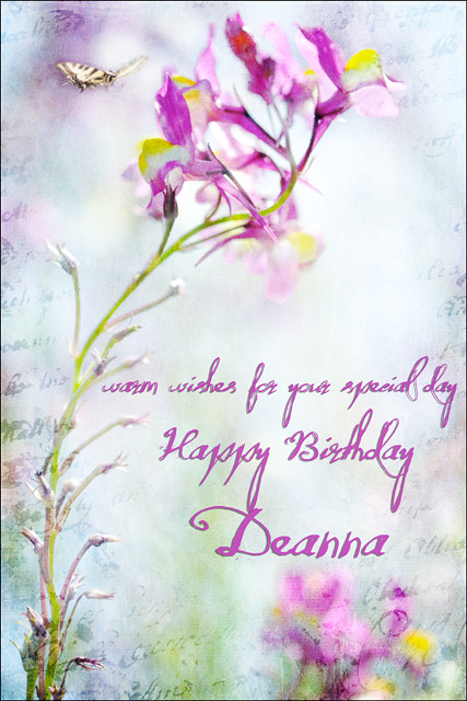 happy birthday deanna Happy Birthday Deanna | Hope you have a beautiful day. bliss… | Flickr happy birthday deanna