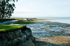 photo of a shoreline