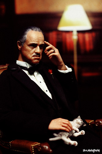 Im Gonna Make Him An Offer He Cant Refuse Steven Benalius Flickr