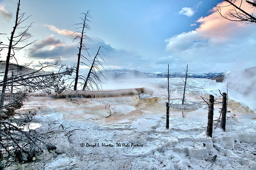 Mammoth Hot Springs Terraces | by Daryl L. Hunter - Hole Picture Photo Safaris